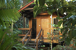 Cape Trib Beach House - Accommodation Redcliffe