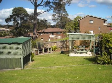 The Tree Motel - Accommodation Redcliffe