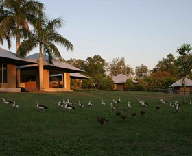 Feathers Sanctuary - Accommodation Redcliffe