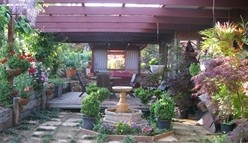 Blossoms Bed and Breakfast - Accommodation Redcliffe