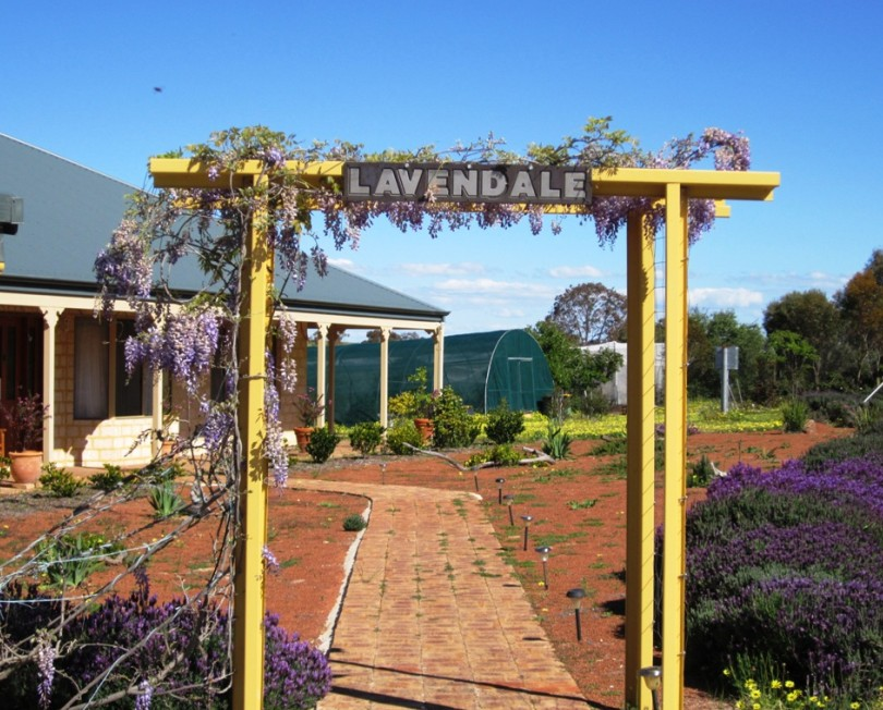 Lavendale Farmstay and Cottages - Accommodation Redcliffe