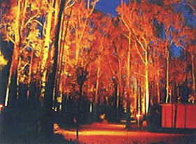 Dwellingup Chalet amp Caravan Park - Accommodation Redcliffe