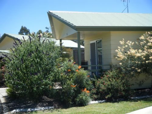 Pepper Tree Cabins - Accommodation Redcliffe