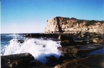 Terrigal Lagoon Bed and Breakfast - Accommodation Redcliffe