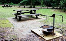 Bellbird campground - Accommodation Redcliffe