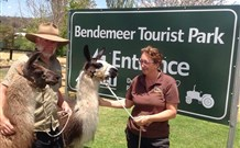 Bendemeer Tourist Park - Accommodation Redcliffe