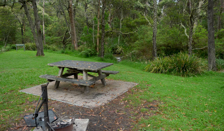 Chaelundi campground - Accommodation Redcliffe