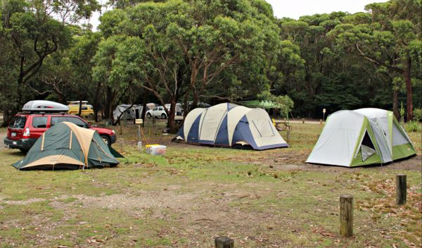 Pretty Beach Campground Murramarang National Park - Accommodation Redcliffe
