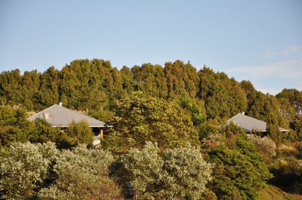 Tallaringa Views - Accommodation Redcliffe