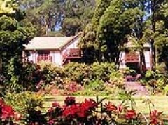 Delvin Health Retreat - Accommodation Redcliffe