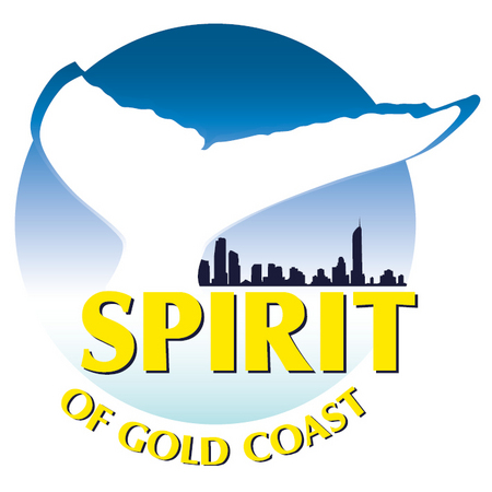 Spirit of Gold Coast Whale Watching - Accommodation Redcliffe