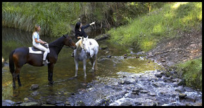 Glenworth Valley Horseriding - Accommodation Redcliffe