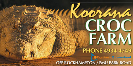 Koorana Saltwater Crocodile Farm - Accommodation Redcliffe