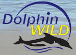 Dolphin Wild - Accommodation Redcliffe