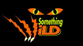 Something Wild - Accommodation Redcliffe