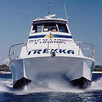 Sunshine Coast Fishing Charters - Accommodation Redcliffe