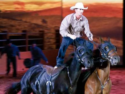 Australian Outback Spectacular - Accommodation Redcliffe