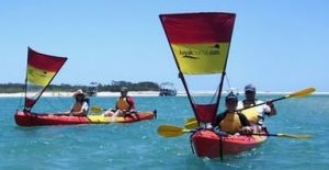 Kayak Noosa - Accommodation Redcliffe