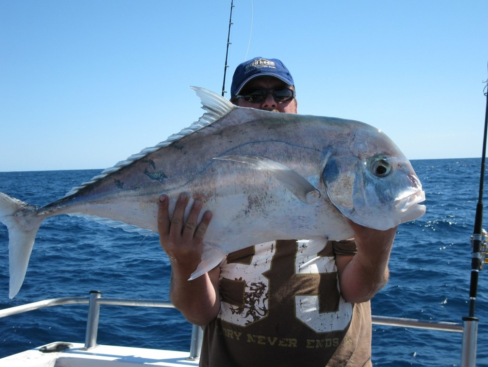 Blue Juice Charters - Accommodation Redcliffe