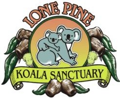 Lone Pine Koala Sanctuary - Accommodation Redcliffe