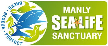 Manly SEA LIFE Sanctuary - Accommodation Redcliffe
