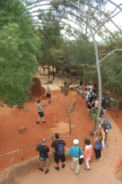 WILD LIFE Sydney Zoo - Accommodation Redcliffe