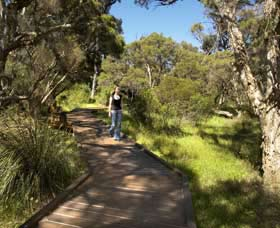 Leschenault Peninsula Conservation Park - Accommodation Redcliffe