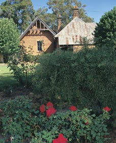 Heritage Rose Garden - Accommodation Redcliffe
