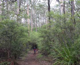 Margaret River Rails Trail - Accommodation Redcliffe
