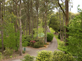 Mount Lofty Botanic Garden - Accommodation Redcliffe