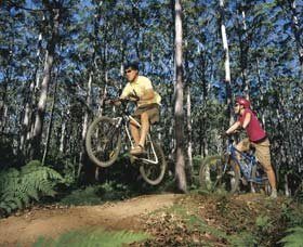 Leeuwin-Naturaliste National Park - Cowaramup - Accommodation Redcliffe