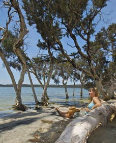 Stokes National Park - Accommodation Redcliffe