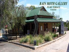 Rain Moth Gallery - Accommodation Redcliffe