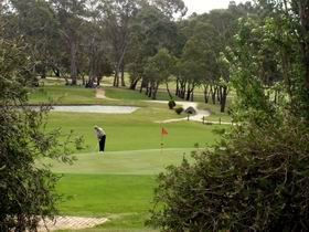 Mount Barker-Hahndorf Golf Club - Accommodation Redcliffe