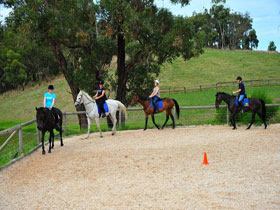Megan Jones Riding School and Trail Rides - Accommodation Redcliffe