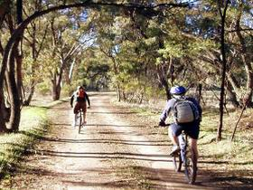 Bike About Mountain Bike Tours And Hire - Accommodation Redcliffe