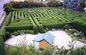 Westbury Maze and Tea Room - Accommodation Redcliffe