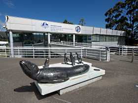Australia's Antarctic Headquarters - Accommodation Redcliffe