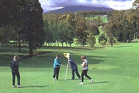 Deloraine Golf Course - Accommodation Redcliffe