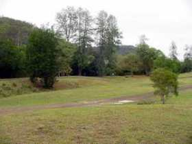 Brooyar State Forest - Accommodation Redcliffe