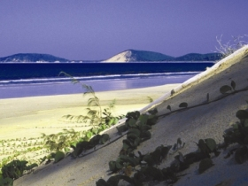 Cooloola Great Sandy National Park - Accommodation Redcliffe