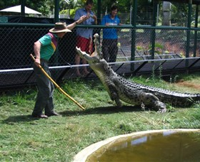 Snakes Downunder Reptile Park and Zoo - Accommodation Redcliffe