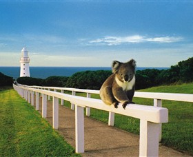 Cape Otway Lightstation - Accommodation Redcliffe