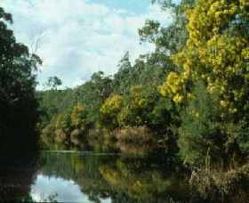Warrandyte State Park - Accommodation Redcliffe