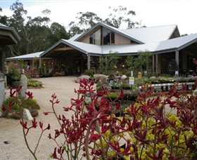 Kuranga Native Nursery and Paperbark Cafe - Accommodation Redcliffe