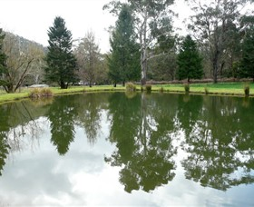 Mountain Fresh Trout and Salmon Farm - Accommodation Redcliffe