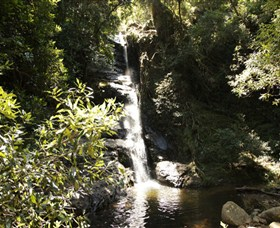 Macquarie Pass National Park - Accommodation Redcliffe