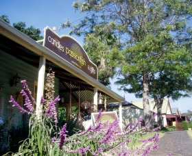 Passionfish Candles - Accommodation Redcliffe