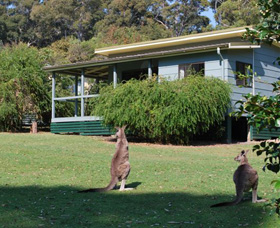 Murramarang National Park - Accommodation Redcliffe