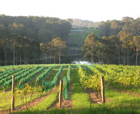 Tilba Valley Wines - Accommodation Redcliffe